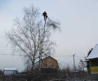 Спилить дерево СПАСМАСТЕР Ярославль
