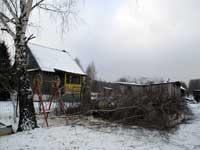 Спил деревьев СПАСМАСТЕР Ярославль